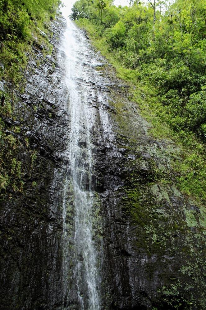 Oahu Honolulu Hawaii Guide on sunscreenandplanes.com (3)
