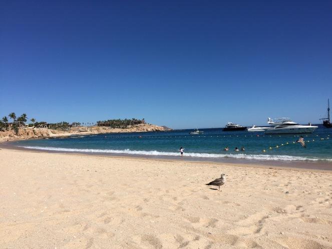 Cabo San Lucas on sunscreenandplanes.com (9)