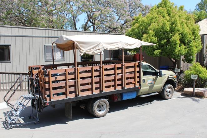 San Diego Safari Park. Go on the Caravan Safari tour where you can feed giraffes and rhinos! On sunscreenandplanes.com (5)